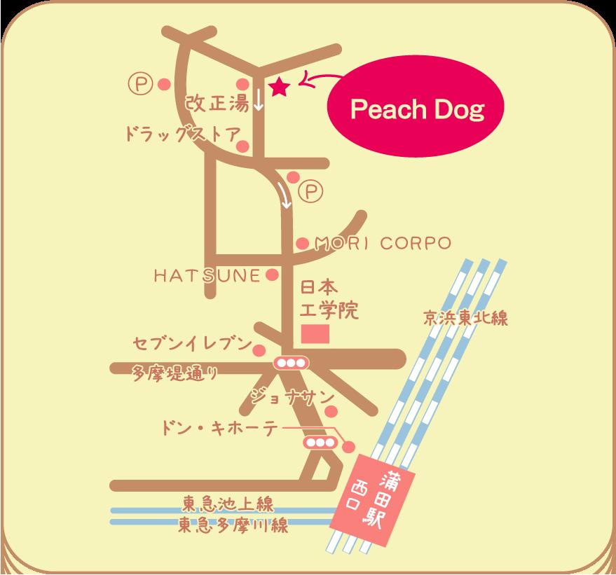 【大田区蒲田トリミングサロン】【高齢犬出張トリミング】