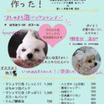 大田区蒲田トリミングサロンPeach Dogオプションメニュー