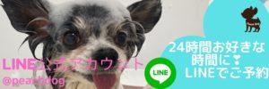 大田区蒲田トリミングサロンLINE予約Peach Dog